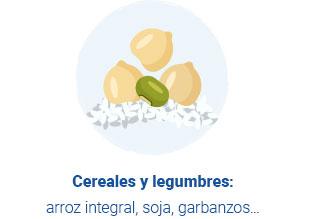 Ilustración de cereales y legumbres